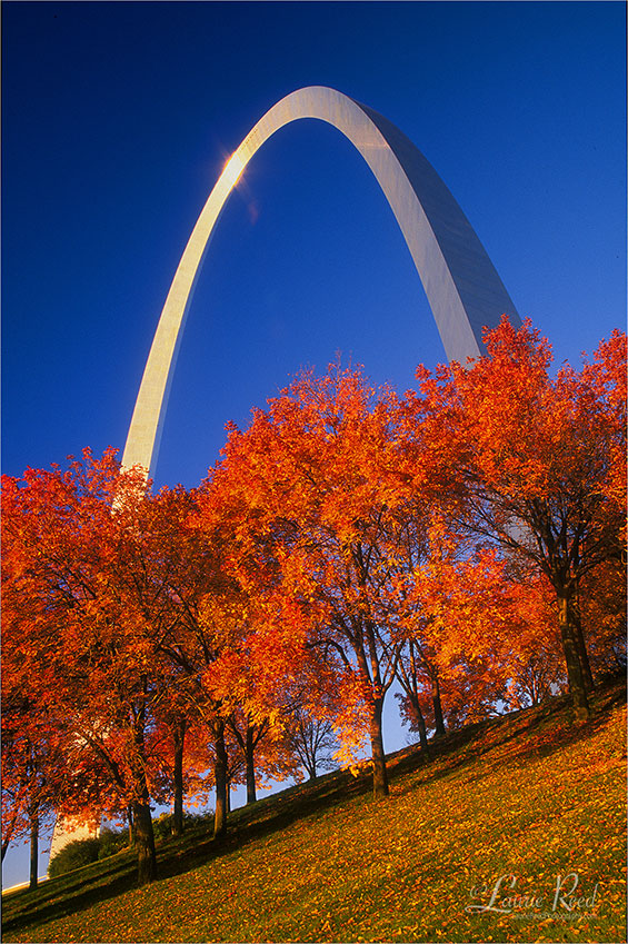 © Laurie Reed Photography - St. Louis Arch